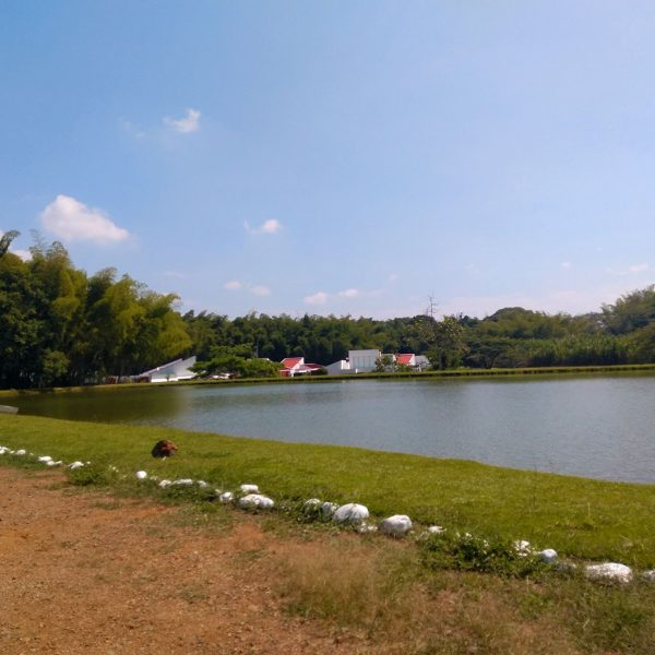 Lago casa de lujo